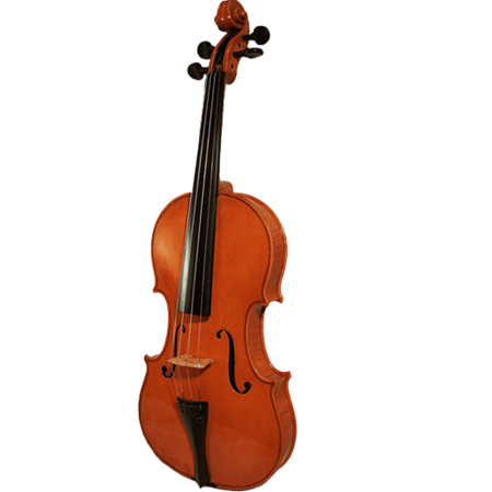 Picture for category Cello